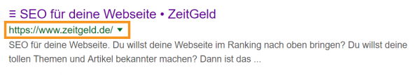 Seo Tipps Result Domain